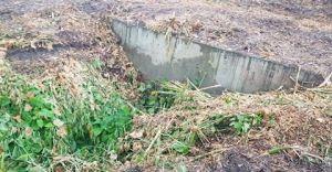 Wody Polskie udrożniają przepust Iłownicy i wykaszają wały