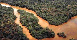 Spływ Amazonką w gminnej bibliotece