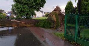 Skutki burzy: powalone drzewa, uszkodzony dom i zburzona kapliczka