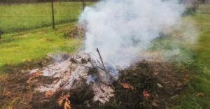 Straż miejska przypomina o zakazie spalania odpadów zielonych