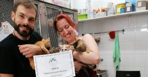 """5450 zł dla potrzebujących zwierząt dzięki akcji """"Łapy w górę"""""""