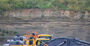 [FOTO, WIDEO] Na kaniowskiej żwirowni zamieszkały... brzegówki