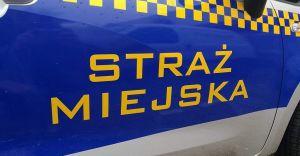 Kierowca PKM próbował obudzić pasażera. Został zaatakowany