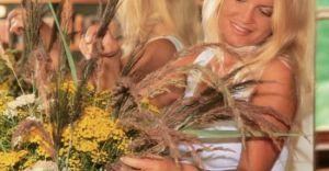 Dzień Kobiet  - zamów kwiaty