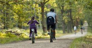 Jak bezpiecznie podróżować na rowerze? Porady