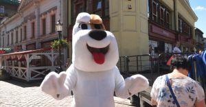 Reksio świętował swoje 50. urodziny w centrum Bielska-Białej!
