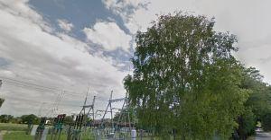 Kolejna wycinka drzew. Tym razem przy ulicy Pasieki
