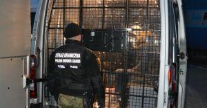 Czworo uchodźców zatrzymanych w Czechowicach-Dziedzicach