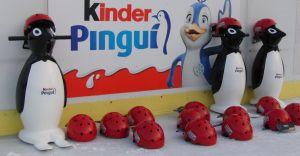 Nauka jazdy na łyżwach dla dzieci na czechowickim lodowisku