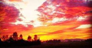 Foto-dnia: jesienny wschód słońca w Bronowie