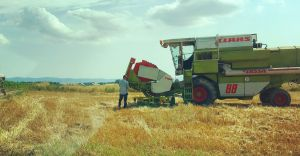 KRUS apeluje o bezpieczną pracę w okresie żniw i sianokosów