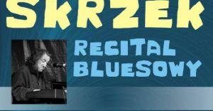 Recital bluesowy w sali widowiskowej