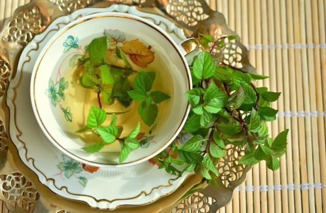 Sklepy zielarskie w Czechowicach-Dziedzicach - najlepsze zioła na rynku
