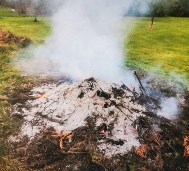 Słony koszt niewiedzy przepisów o spalaniu odpadów zielonych...