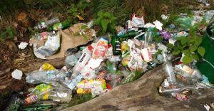 Dzikie wysypisko śmieci powstało w zabrzeskim lesie