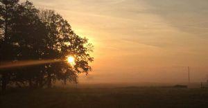 Foto-dnia: jesienny wschód słońca w Ligocie