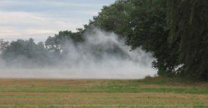 Straż miejska walczy z problemem palenia trawy i liści na posesjach