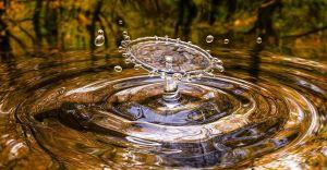 ŚZGiP zachęca samorządy i mieszkańców do oszczędzania wody