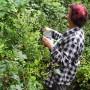 Ludzie ruszyli do lasu po owoce