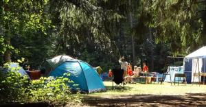 Funkcjonariusze służb kontrolują obozy letnie w regionie