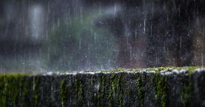 Zbiorniki na wodę - sposób na zmniejszenie zużycia wody