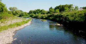 Wideo-dnia: czerwcowe popołudnie nad rzeką Białką