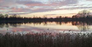 Foto-dnia: Zachód słońca nad stawem w Goczałkowicach