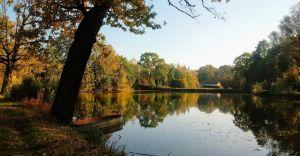 Foto-dnia: jesień nad stawami w Czechowicach-Dziedzicach