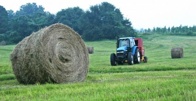 traktor,ciągnik,rolnik,rolnictwo,pole,rola,uprawa