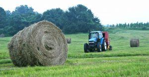 Nabór wniosków o pomoc dla gospodarstw dotkniętych COVID-19