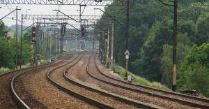 Roboty na torach. Koleje Śląskie wprowadzą zastępczą komunikację