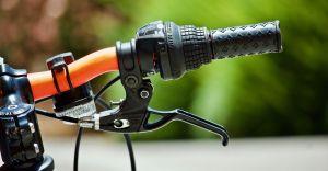 Rajd rowerowy śladem gminnych pomników przyrody już 23 maja!