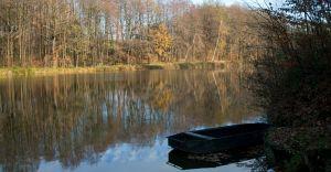 Foto dnia: jesienne popołudnie w Czechowicach Górnych