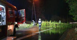 Strażacy usuwali skutki silnego wiatru. Około 20 interwencji